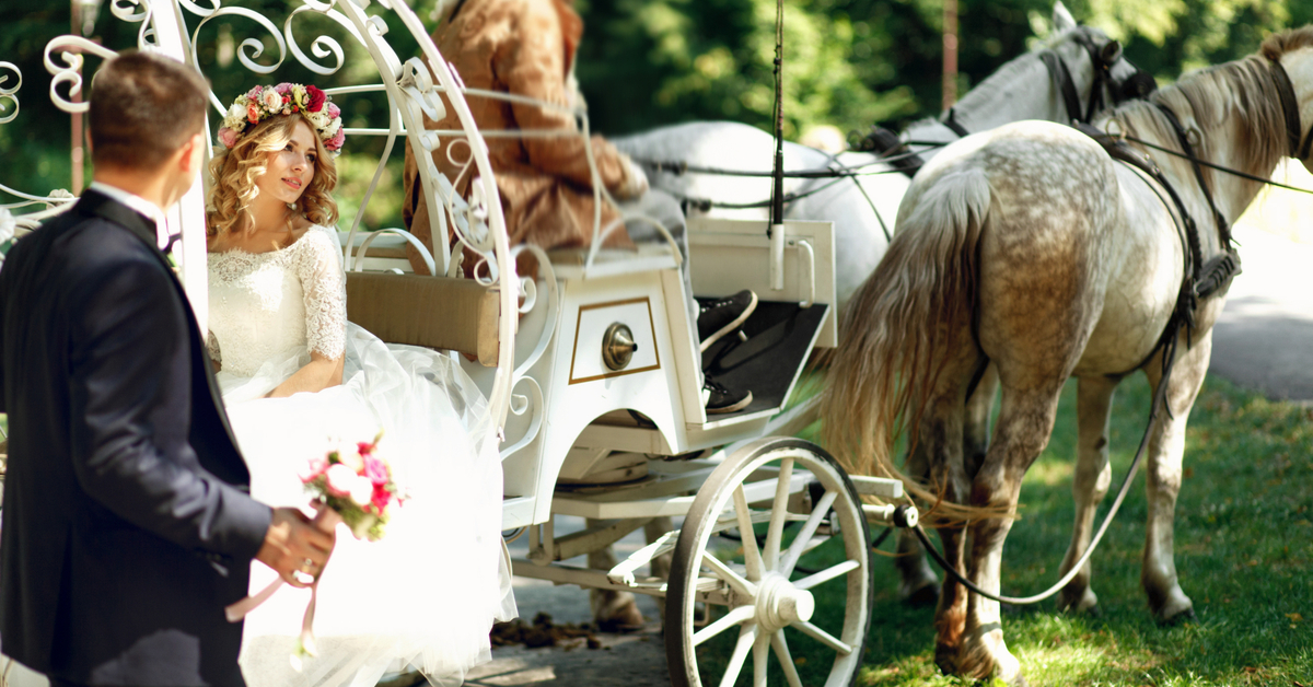 huifkar paard trouwfeest eco