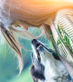 5 leuke activiteiten die je samen met je hond kan doen