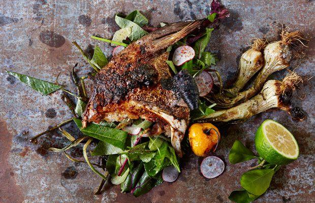 Restaurant, Hartwood, Tulum, Dish, Fish