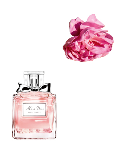 miss dior parfum meiroos
