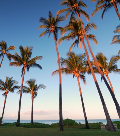 Quiz: welke last-minute vakantiebestemming moet jij boeken?