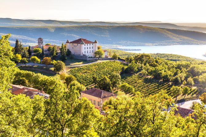 reisbestemmingen september provence wijngaard