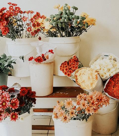De leukste bloemen- en plantenwinkels in Gent