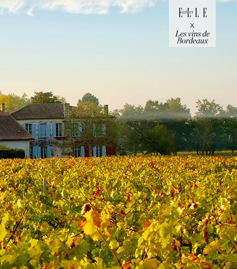Roadtrip Bordeaux: ontdek de Médoc wijnstreek
