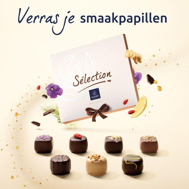 Affiche-Sélection-Leonidas-NL