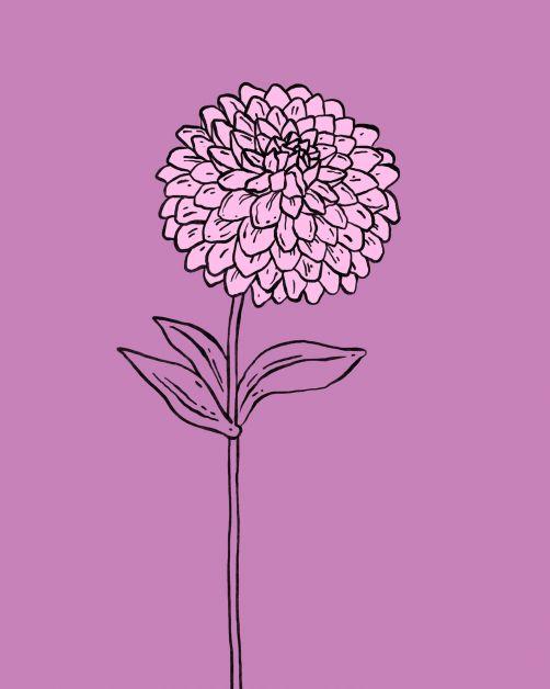 bloemen horoscoop bloomon