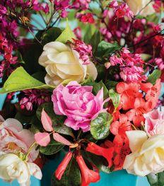 Bloemenhoroscoop: ontdek welke bloem bij jou past