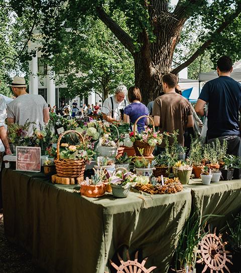 Shop lokaal: Boeren & Buren bundelt al het lekkers uit jouw buurt