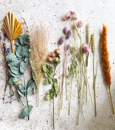 Deco tips: zo richt je je huis in met droogbloemen