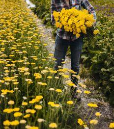 Groene leestips: 9 hippe boeken over planten en bloemen