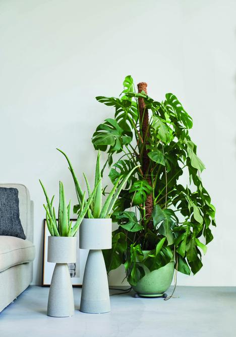 Hebben: de stijlvolle plantenpotten van D&M Deco - 5