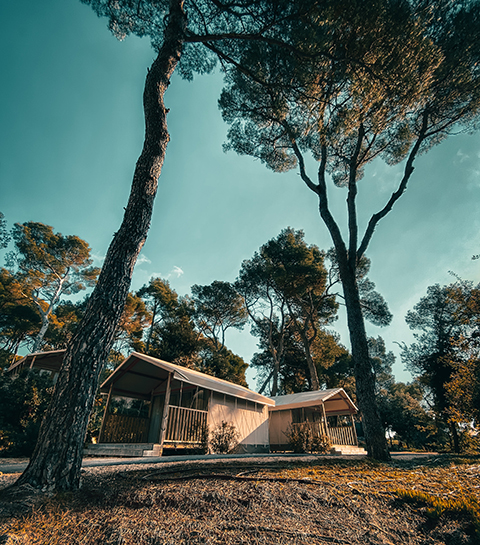Staycation: dit zijn de mooiste natuurhuisjes in België