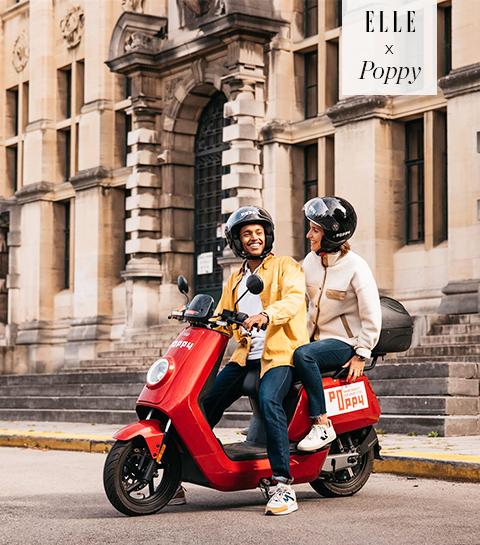 Met de Poppy-app in de hand, reis je door het hele land!