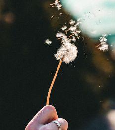 Pollenallergie: deze trucjes helpen bij je hooikoorts