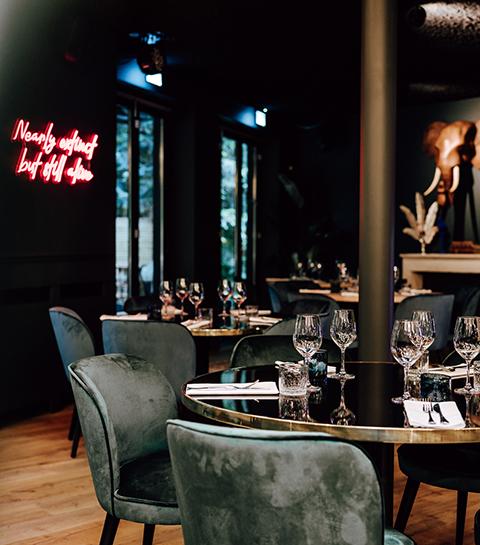 Hotspot: restaurant Bagheera brengt tropische vibes naar Brussel
