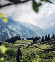 Op dit groene paradijs worden de kruiden en planten van Clarins gekweekt