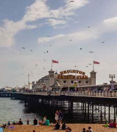 Ontdek onze complete reisgids met alle hotspots in Brighton